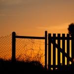 Derrière la barrière
